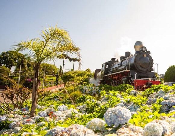 Porque fazer o passeio de trem ao visitar Gramado