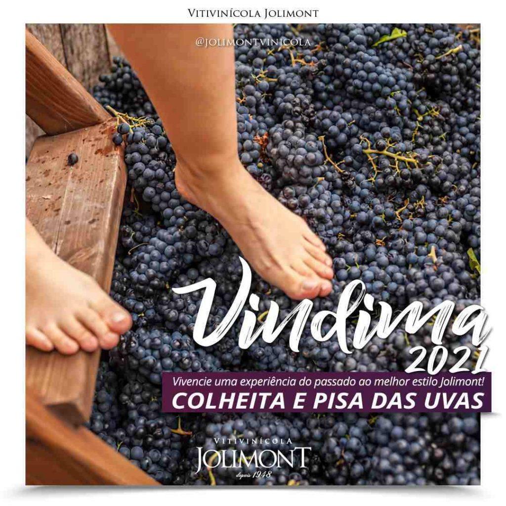 Rota do Vinho em Gramado
